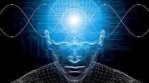 brain5-300x168-1